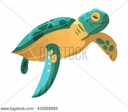 Green Sea Turtle As Marine Reptile With Hard Shell And Flipper Vector Illustration
