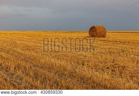 Hay Collected In Briquettes Stands On The Harvested Field. High Quality Photo