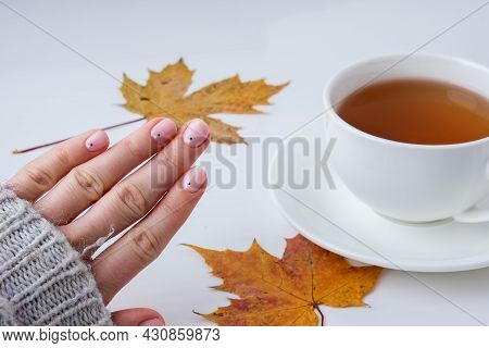 Woman Hands With Beautiful Nude Manicure Holding Autumn Leaves. Female Manicure, Natural Look. Nails