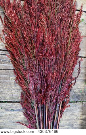Red Stabilized Reed On An Old Wooden Table For Home Decor