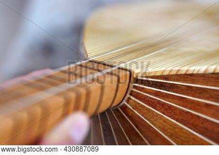 Long Neck Saz-baglama From Turkish Musical Instruments, Turkish Musical Instruments, Close-up Saz,