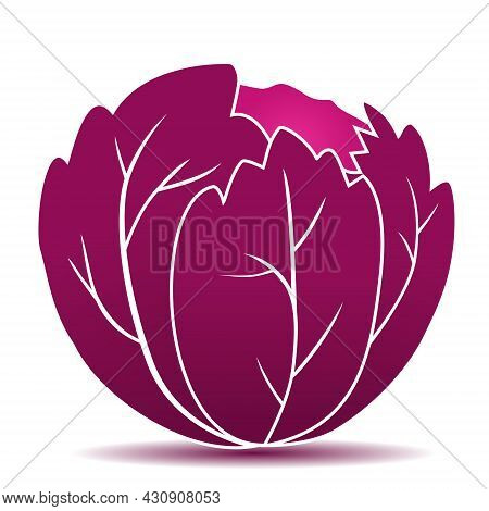 Vector Icon Of Fresh Red Cabbage. Red Cabbage Vegetable Illustration Design.