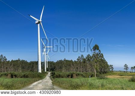 Wind And Renewable Energy Masts With Their Large Propellers And Turbines In A Rural Area In The Nort