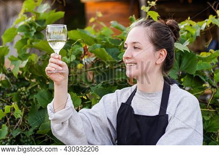 Portrait Of Young Woman Winemaker Checking The White Wine Quality On The Vineyard During A Sunset. S