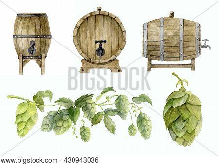 Watercolor Set Of Wooden Oak Beer Barrels With Botanical Illustration Of Hop. Hand Painted Sketch Fo