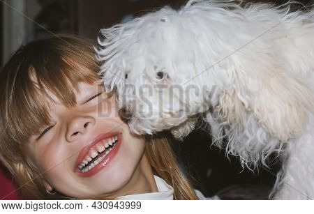 A Beautiful Baby Girl, Hugging Her Beautiful White Poodle Puppy, Smiles Happily. A Toy White Poodle