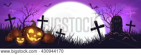 Halloween Pumpkins On Cemetery. Purple Night Background. Banner With Jack O' Lanterns, Ghosts, Bats