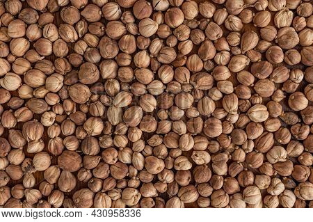 Top View Close-up Photo Image For A Group Of Dry Cardamom For Background, Seeds Skin Texture, Pods S