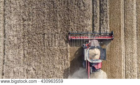 Aerial View Of Harvesting. Red Combine Harvester Harvests Wheat In The Field In Sunny Day.