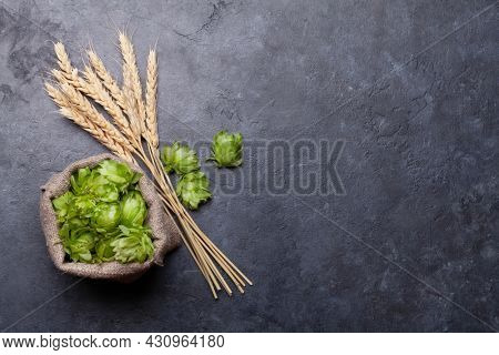 Lager beer hops and wheat on old stone table. Top view flat lay with copy space