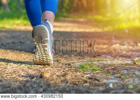 Woman Walking Or Hiking Trail In Forest.walking,running Legs In Forest, Adventure And Exercising In