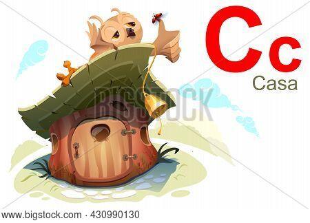 Spanish Alphabet Abc Letter C Casa Alfabeto Espanol