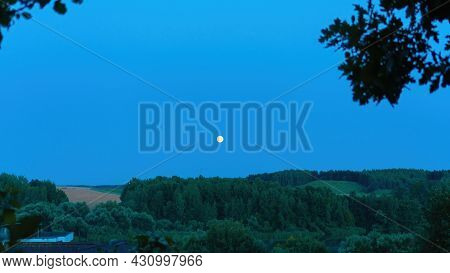 Night Sky With A Full Moon Surrounded By Forest And Trees. Full Moon In The Night Blue Sky. Yellow C