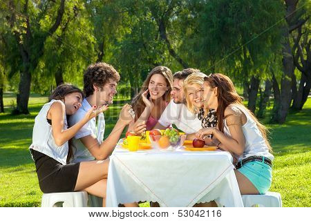 Group Of Young Friends Picnicking In A Park