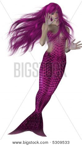 Pink haired and tailed mermaid swimming on a white background poster