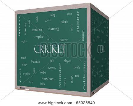 Cricket Word Cloud Concept On A 3D Cube Blackboard