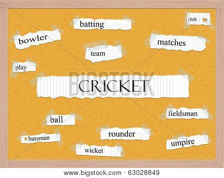 Cricket Corkboard Word Concept