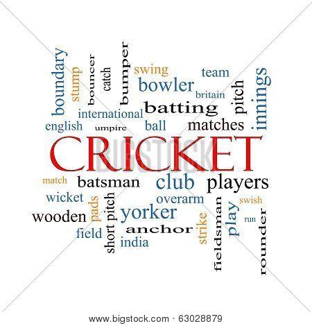 Cricket Word Cloud Concept