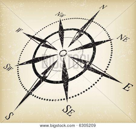 Gunge compass vector