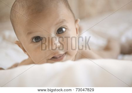 Close up portrait of baby