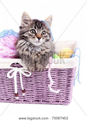 Funny gray kitten and balls of thread in wicker basket, isolated on white poster