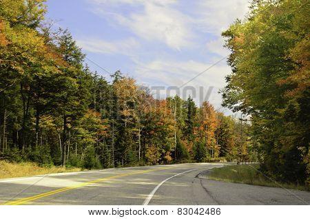 Autumn colored journey