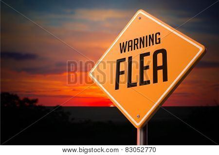 Flea on Warning Road Sign.