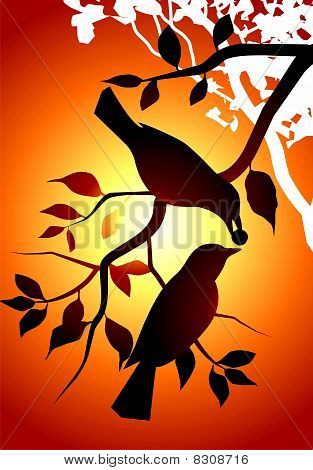Illustration of birds in a yellow background poster