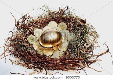 Incubating wealth