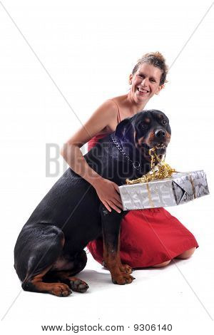purebred rottweiler sitting with gift and woman in a red dress poster