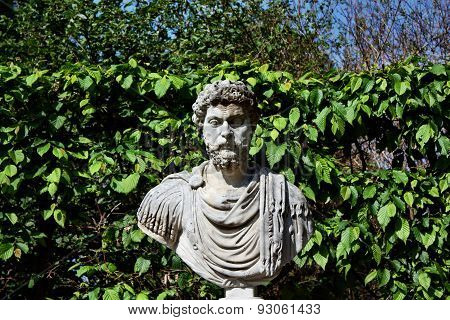 Head Statue