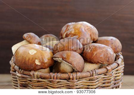Wild Porcini Mushrooms In Handmade Wicker Basket On Wooden Background