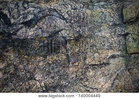texture of granite stone covered with moss closeup