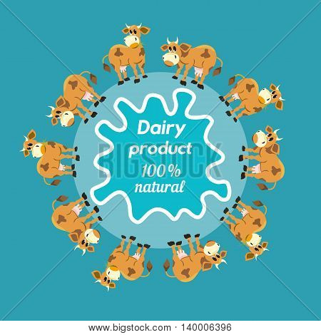 Milk cows. Dairy natural product Concept. Dairy farming concept. Nutritional product. Fresh farm organic product. A herd of cows. Milk splashes. Vector illustration
