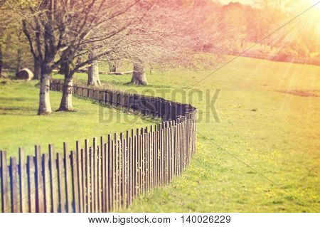 Wooden Fence with the early morning sun beams