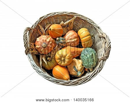 Basket full of Gourds on a white background