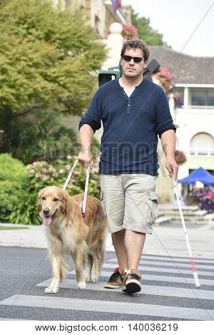 Blind man crossing the street with help of guide dog