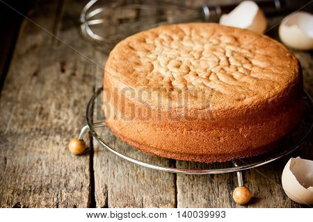 Homemade ideal sponge cake on wooden table blank space for text selective focus