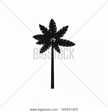 Palm woody plant icon in simple style isolated on white background. Flora symbol