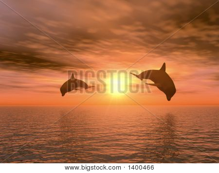 Two Dolphin