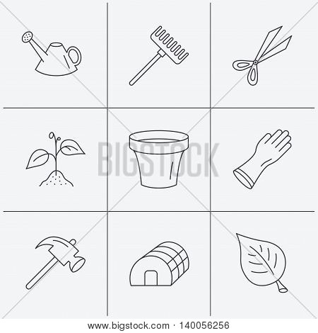 Sprout plant, scissors and pot icons. Gloves, rake and watering can linear signs. Hothouse, leaf and hammer flat line icons. Linear icons on white background. Vector