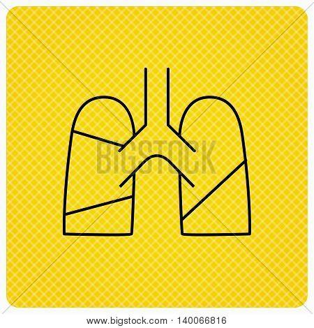 Lungs icon. Transplantation organ sign. Pulmology symbol. Linear icon on orange background. Vector