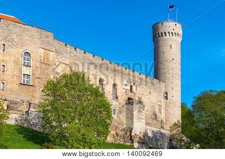 The Pikk Hermann Tower and Toompea Castle. Tallinn Estonia Baltic States Europe poster