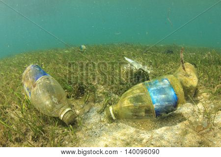 Plastic water bottles pollute the ocean