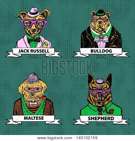 Hipster Animals Set Dog, Large Group Of Dog Breeds, Isolated Vector