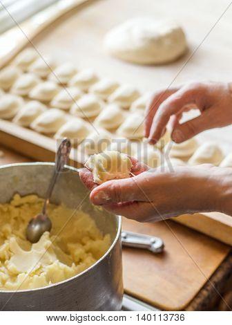 Woman preparing vareniki or dumplings pierogi on wooden bord for boiling. Cook prepare traditional Ukrainian cuisine. Mother is making tasty dish for her family