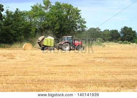 Red tractor in corn field bailing hay