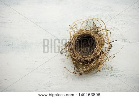 Empty bird nest on white washed wood surface