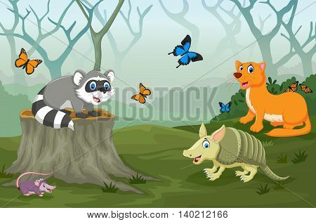 funny animal with deep forest landscape background