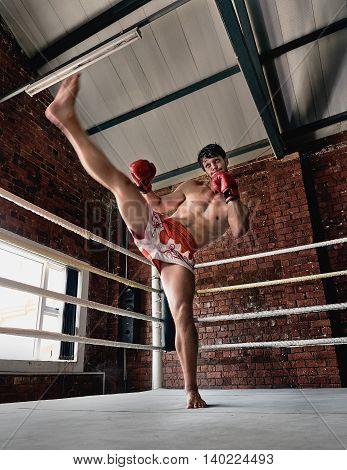 Man Training Gym Boxing Mma Ring Shadow Boxing Mixed Martial Arts Fitness High Kick Front Kick